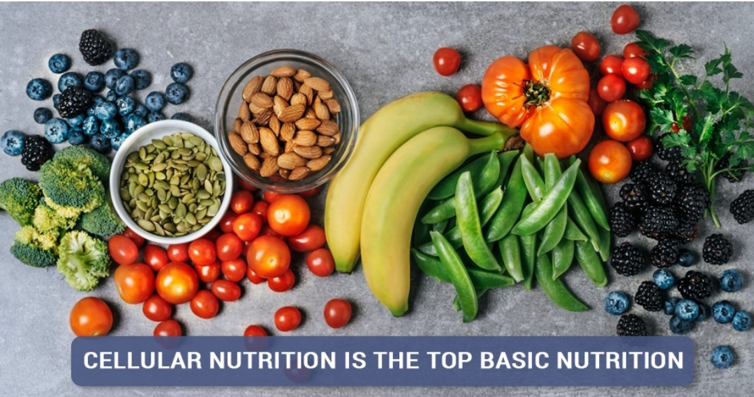 Cellular nutrition is the top basic nutrition